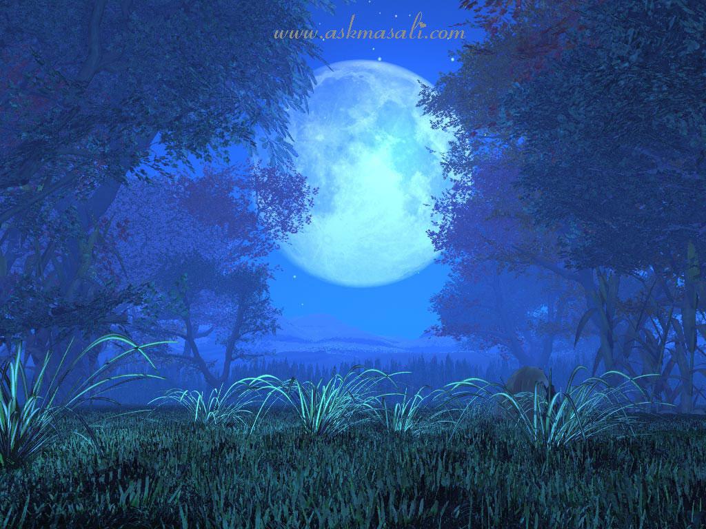 Blue Christmas Tree Forum Avatar: Manzara Resimleri En Güzel Manzaralar Doğa Resimleri